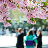 Achoo! 10 Worst Cities for Spring Allergies