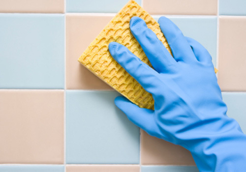 Precautions for Housecleaners