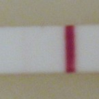 13DPO. Same darkness as yesterday, I think. But at least there is still a line! :)