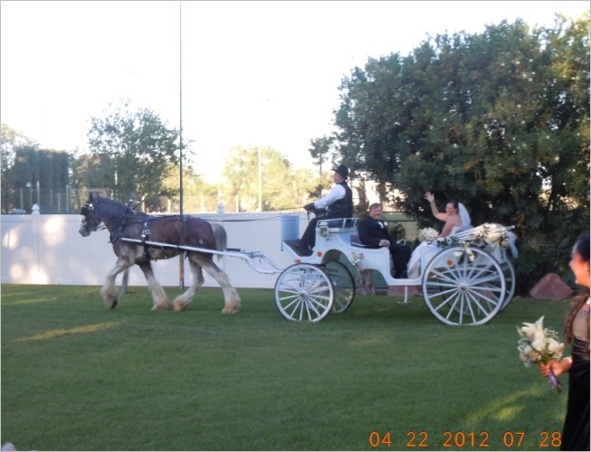 Kim's arrival, complete with horse & carriage