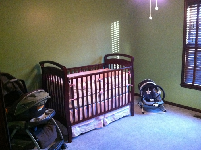 Thank you to my bro and hubby for helping me get a great start on the nursery! I love it!!!