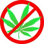 Marijuana is a harmful and noxious drug