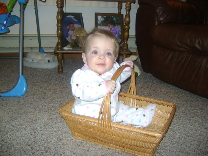 Karlee in the basket